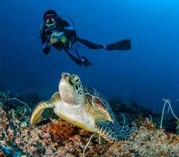 Diving on Gili Meno Island